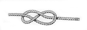 Figure-of-eight knot